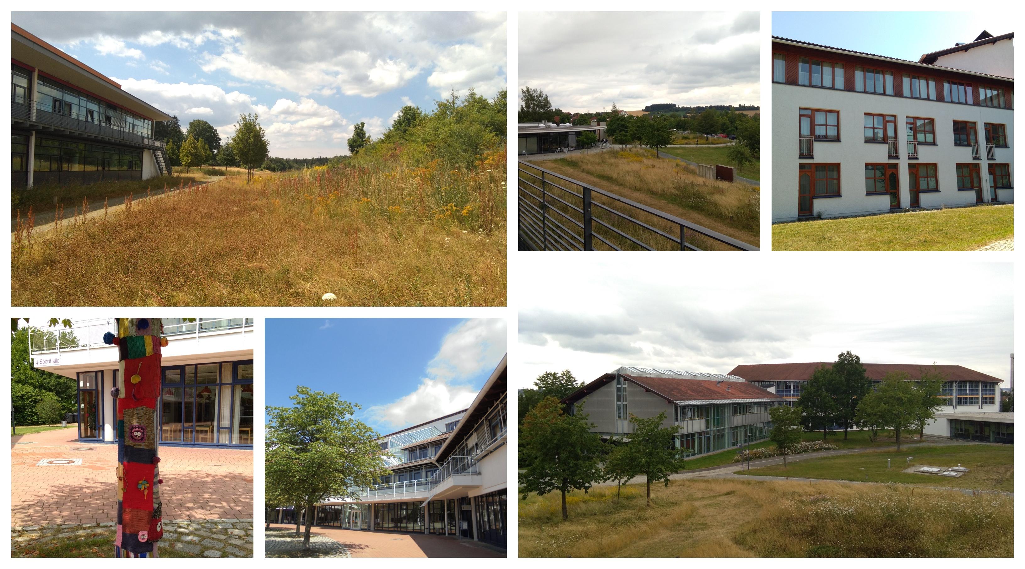 Sport Hof University